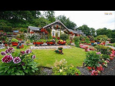 Home & Garden - Amazing Landscaping Design Ideas