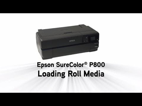 Epson SureColor P800 Printer | Large Format | Printers | For Work