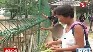 Pamilya ni Mary Jane Veloso, ipinasyal ng PH Embassy sa Indonesia