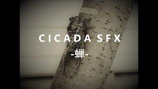 【新作効果音】CICADA SFX -蝉- 販売開始!