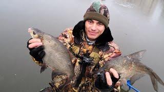 Зимняя рыбалка на леща в подмосковье