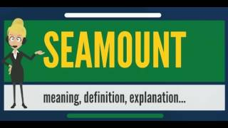 What is SEAMOUNT? What does SEAMOUNT mean? SEAMOUNT meaning, definition & explanation