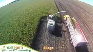 Yost Farm CYHarvesting Silage
