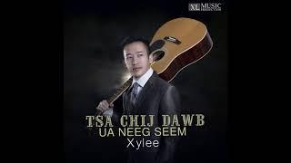 Xy Lee - Tsa Chij Dawb Ua Neeg Seem ( Full song ) New Song 2018