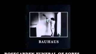 Bauhaus - Rosegarden Funeral Of Sores (with lyrics)