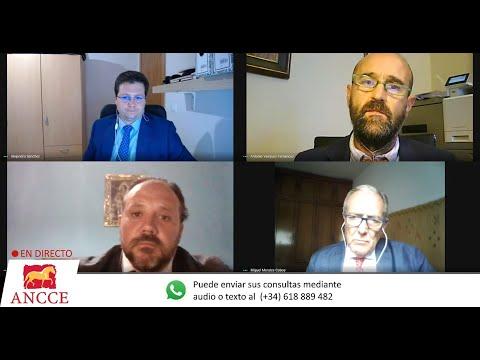 ANCCE | Encuentro Digital ANCCE: Reglamentación 2020 Morfología