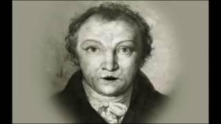 The Tyger - William Blake - Poem - Animation