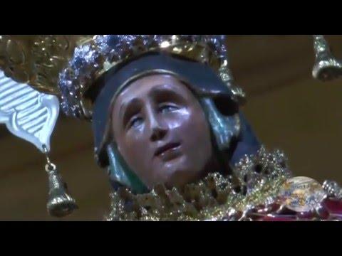 MADONNA DELLA PACE, IL CARRO E IL VOLO DELL'ANGELO: LE PROVE. GUARDA IL VIDEO