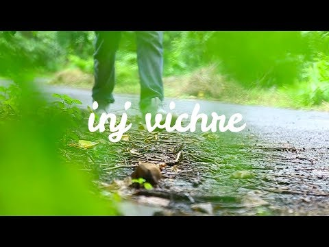 Inj Vichre