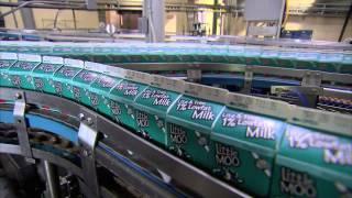America's Heartland:  Alpenrose Dairy Farm