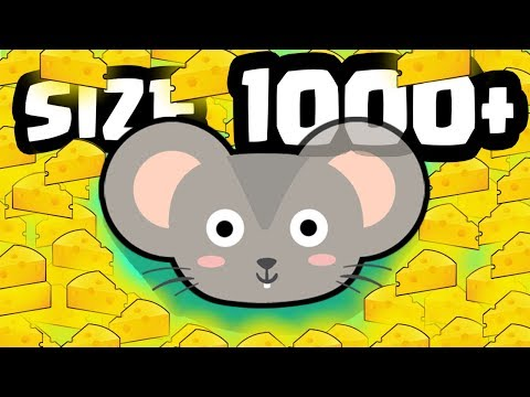 CatMouse.io Video 2