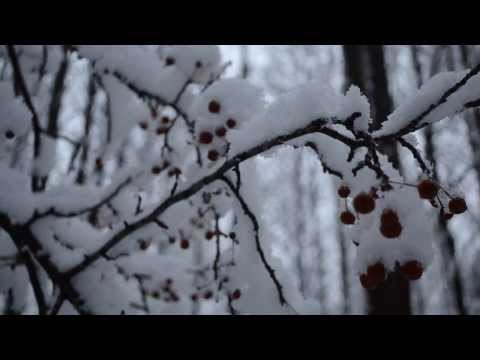 """Winter""--Brian Curry (Official Video)"