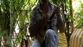 ZZ TOP - She's a Heartbreaker - my uke version
