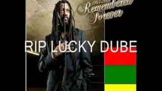 Lucky Dube   Nobody Can Stop Reggae