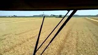 preview picture of video 'Wheat harvest 2011'