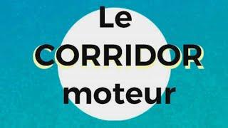 Le corridor moteur : Stimuler la motricité globale à la maison