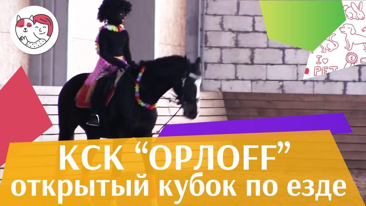 Открытый кубок КСК Орлоff   Выездка   3 на  ilikepet