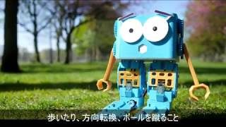 Marty the Robot 組み立て、プログラミングできる歩行型ロボット