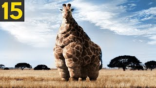 15 FATTEST Animals Ever Seen