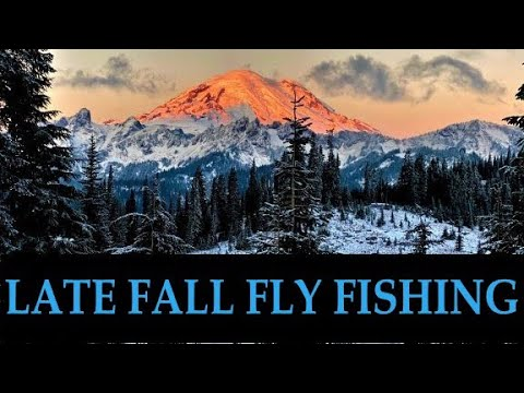 Freestone River Fly Fishing