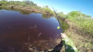 Ловля подлещика на удочку, видео rybachil.ru