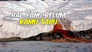 7 Fakta Menarik Tentang Benua Antartika yang Jarang Didengar Orang