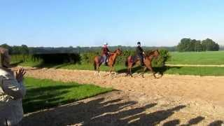 preview picture of video 'Horses training at Chantilly 2013-09-24'