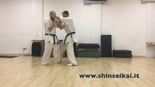 Gambar cover Shinseikai Karate Video Tutorial - Sabaki Basics