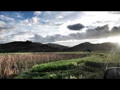 Pulanglah (Bansi Instrumental Cover)