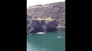 Blue Lagoon Running Cliff Jump Pembrokeshire