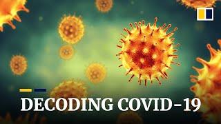 Coronavirus: Decoding Covid-19