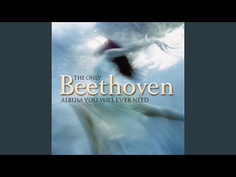 "Piano Sonata No. 14 In C-Sharp Minor, Op. 27, No. 2, ""Moonlight"": I. Adagio Sostenuto"