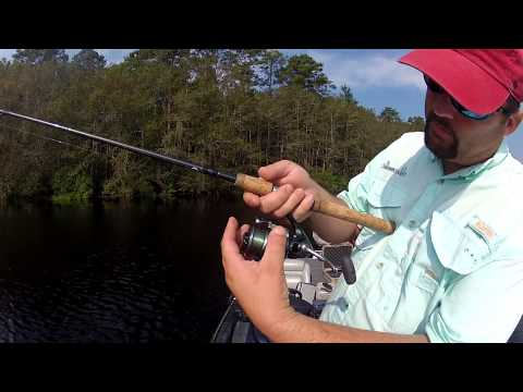 Fishing for Beginners – How to Cast a Spinning Reel