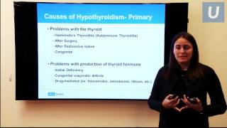 The Underactive and Overactive Thyroid   Stephanie Smooke, MD, and Angela Leung, MD   UCLAMDChat