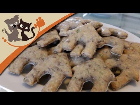 Hundefutter selber machen - Hackfleischkekse backen für Hunde - Rezept und Anleitung