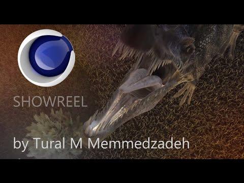 2014 Reel By By Tural M Memmedzadeh