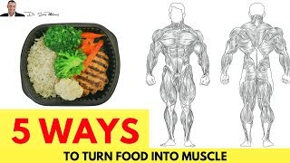💪 5 Ways To Turn Food Into Muscle & NOT Fat