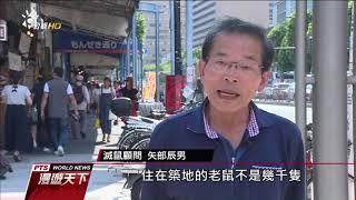 東京築地市場將搬遷老鼠問題湧現