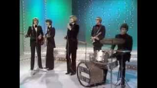 'Theres A Kind Of Hush'  - Herman's Hermits