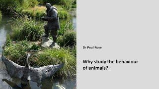 Why study animal behaviour?