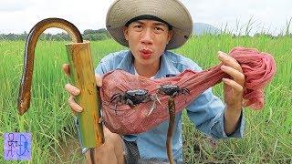 Chưa Bao Giờ Bẫy Lươn ,Cua Lại Đơn Giản Như Vậy .Bẫy Cua Bằng Ống Tre.Crab ,Eels Trap Use Bamboo
