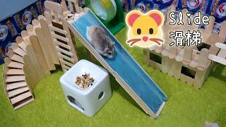 【DIY Guide】Large Slide :3 大型倉鼠滑梯 兩隻滑鼠盡情在樂園中遊玩吧!