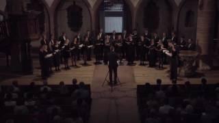 Junger Kammerchor Basel in der Peterskirche