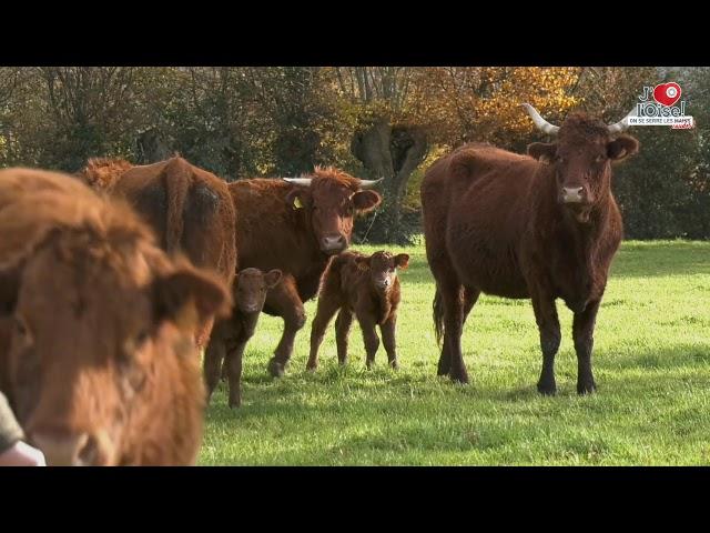 J'aime l'Oise, on se serre les coudes ! Benoit Hillion, producteur et éleveur de vaches Salers