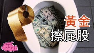 五個有錢人炫富購買的無用昂貴物品