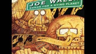 Vote for Me - Joe Walsh