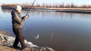 Казахстан рыбалка в алматы и алматинской области 2020