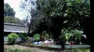 preview picture of video 'Kuburan Keramat Panjang Banyuasin Sumsel.avi'