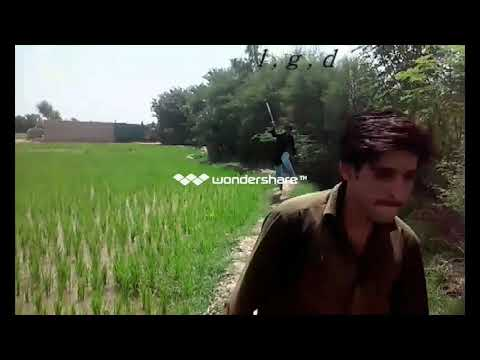 Jung Sindhi Action TeleFilm Shan Ali Laghari Movie