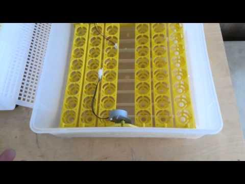 inqubator turkiyə istehsalı